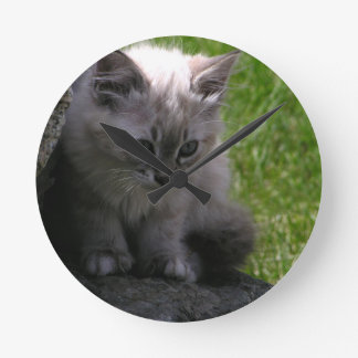 Pretty Kitten Wallclock