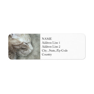 Pretty Kitty Profile | Abstract | Watercolor Return Address Label