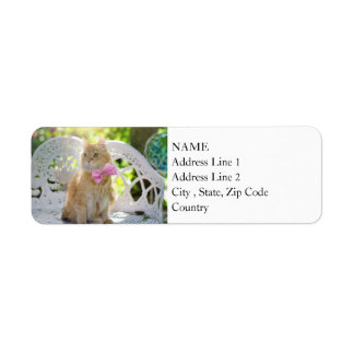 Pretty Kitty with Pink Bow Return Address Label