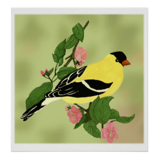 Pretty Little Goldfinch Bird Poster