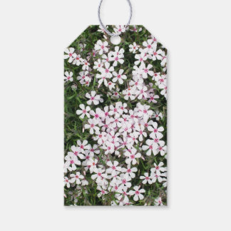 Pretty Little Pink Flowers Gift Tags