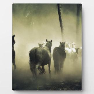 PRETTY LOOKING HORSES PLAQUE