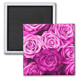 Pretty Magenta Pink Roses Flower Bouquet Square Magnet