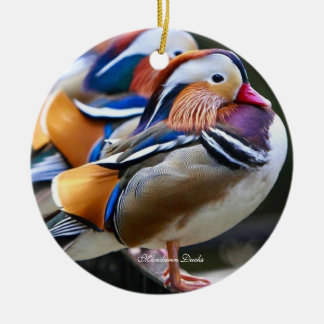 Pretty Mandarin Ducks,  Circle Ornament