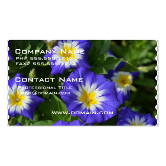 Pretty Morning Glories Business Card
