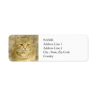 Pretty Orange Kitty | Abstract | Watercolor Return Address Label