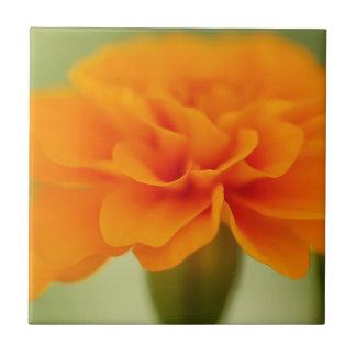 Pretty Orange Marigold Tile