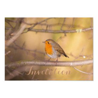 Pretty Orange Robin In The Woods 13 Cm X 18 Cm Invitation Card
