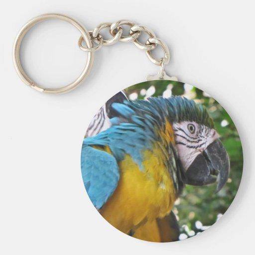 Pretty Parrots Key Chain