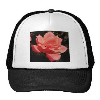 Pretty Peach Pink Rose floral Trucker Hat