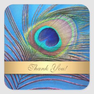 Pretty Peacock Feather Thank You Square Sticker
