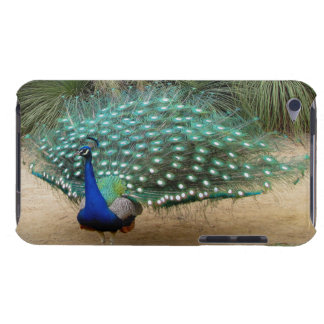 Pretty Peacock iPod Case