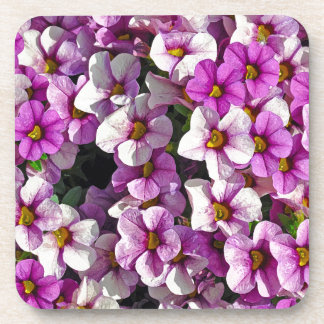 Pretty pink and purple petunias floral print coaster