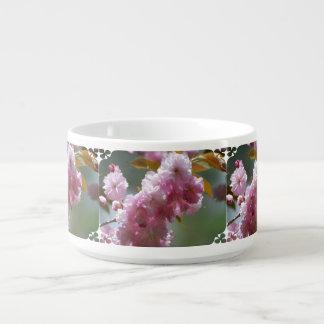 Pretty Pink Cherry Blossoms Chili Bowl