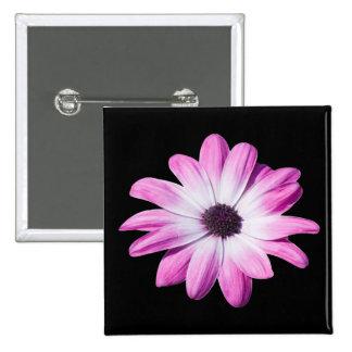 Pretty pink daisy flowers button, pin, gift idea