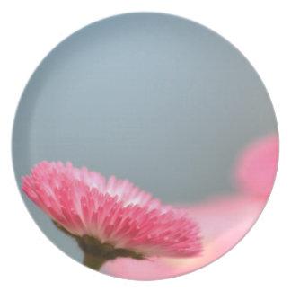 Pretty Pink English Daisy Flower Dinner Plates