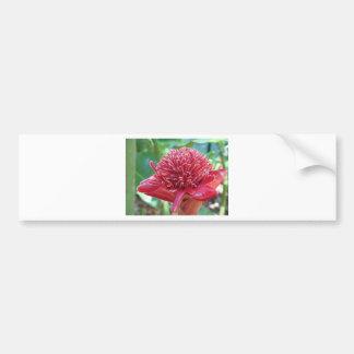 Pretty Pink Flower Bumper Sticker