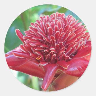 Pretty Pink Flower Round Sticker