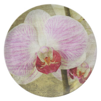 Pretty Pink Orchid Flowers Plate