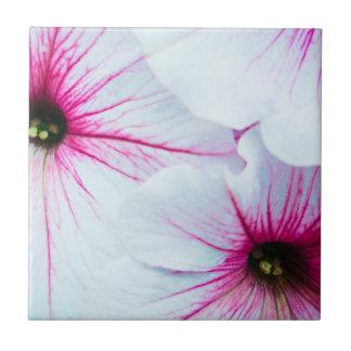 Pretty Pink Petunias Tile