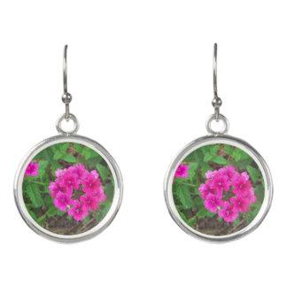 Pretty pink verbena flowers floral photo earrings