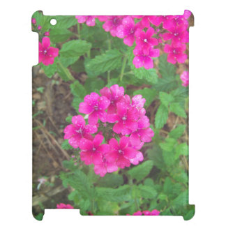 Pretty pink verbena flowers floral photo iPad case