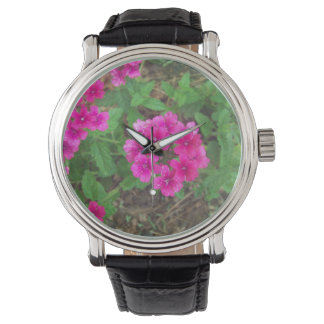 Pretty pink verbena flowers floral photo watch