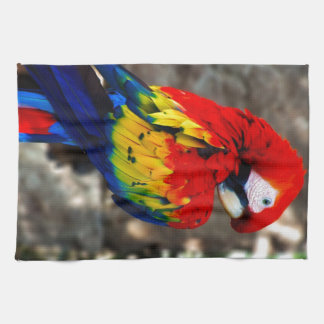 Pretty Polly Parrot Towel