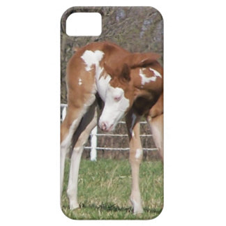 Pretty Pony iPhone 5 Cover