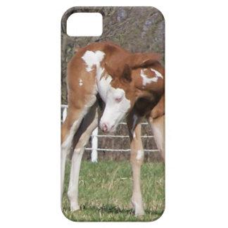 Pretty Pony iPhone 5 Case