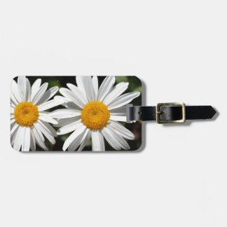 Pretty pure white daisy flowers luggage tag