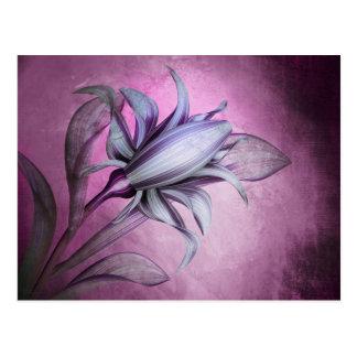Pretty Purple Flower Blossom Art Postcard