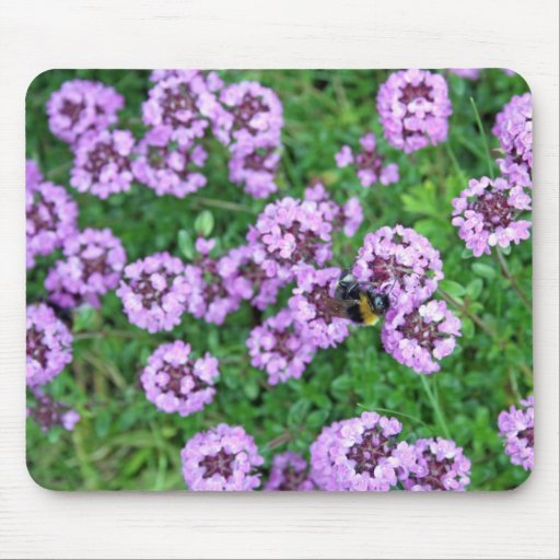 pretty purple flowers and bee mousepad