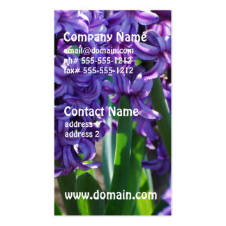 Pretty Purple Hyacinth Business Cards
