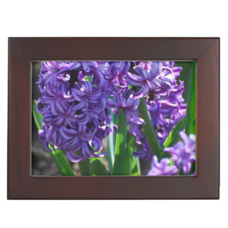 Pretty Purple Hyacinth Memory Box