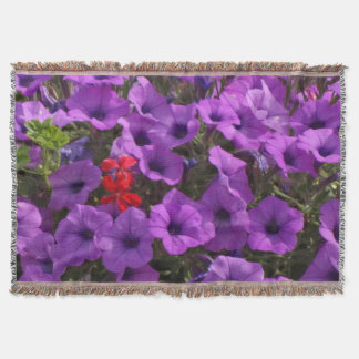 Pretty Purple Petunias and Red Flowers Photo