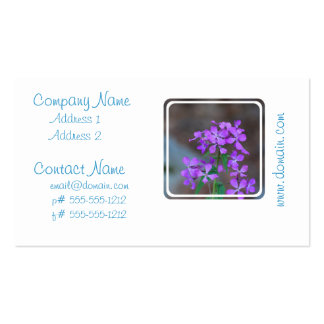 Pretty Purple Phlox Flowers Business Card