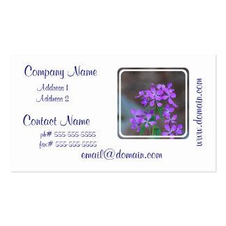 Pretty Purple Phlox Flowers Business Card Templates