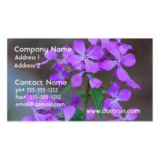 Pretty Purple Phlox Flowers Business Card Template