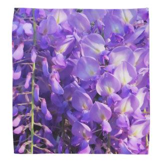 Pretty purple Wisteria flowers Bandana