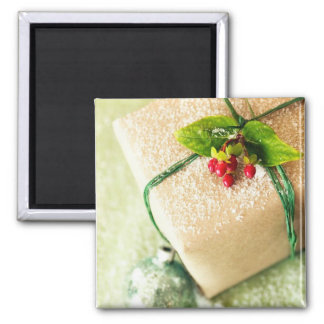 Pretty Red and Green Season Holiday Greetings Magnets