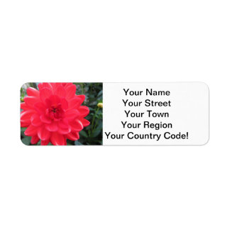 Pretty Red Dahlia Return Address Label