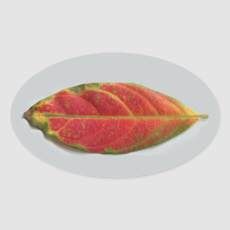 Pretty Red Leaf oval sticker, sealer, label