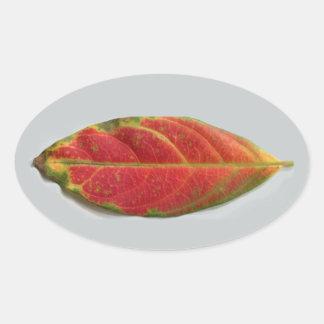 Pretty Red Leaf oval sticker, sealer, label Oval Sticker