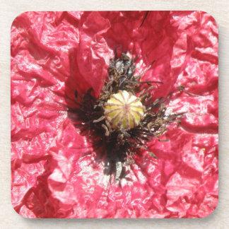 Pretty Red Poppy Flower Macro Cork Coaster