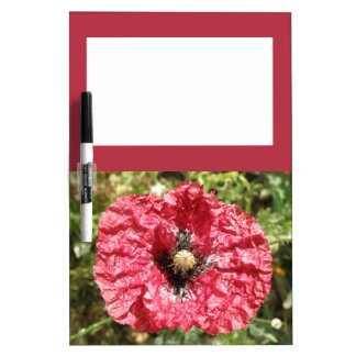 Pretty Red Poppy Flower Macro Memo Board Dry Erase Board