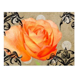 Pretty Rose Postcard
