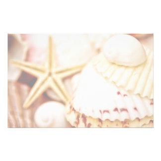 Pretty Seashells Stationery