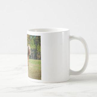 Pretty Shetland Pony Coffee Mug