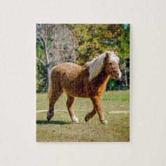 Pretty Shetland Pony Jigsaw Puzzle